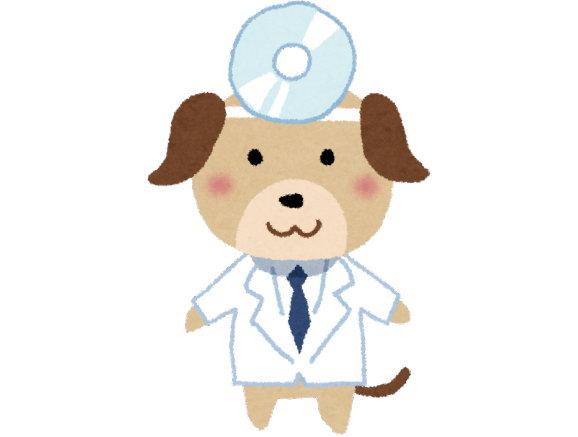 約60%の飼い主さんが、ペットの誤飲を体験しています
