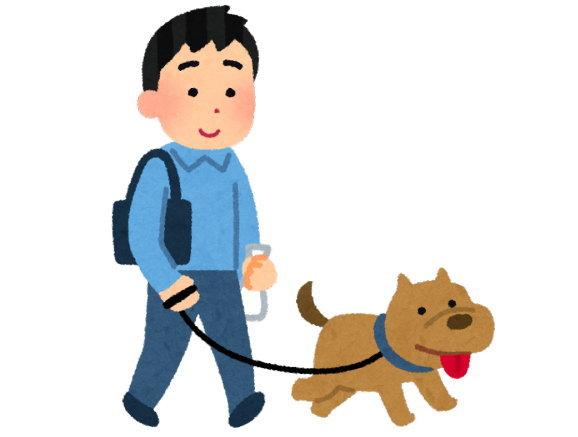 毎日30分以上、愛犬と散歩しています