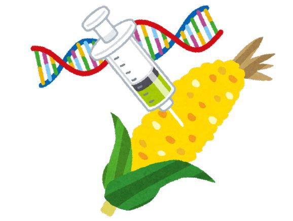 遺伝子組み換え食品は食べません