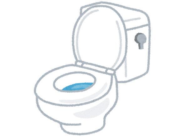 トイレが流せないのは、すごいストレスでした