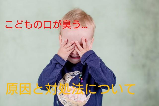f:id:imimame-mamii:20181106180545j:image