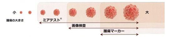 f:id:immunityup:20171211173743j:plain