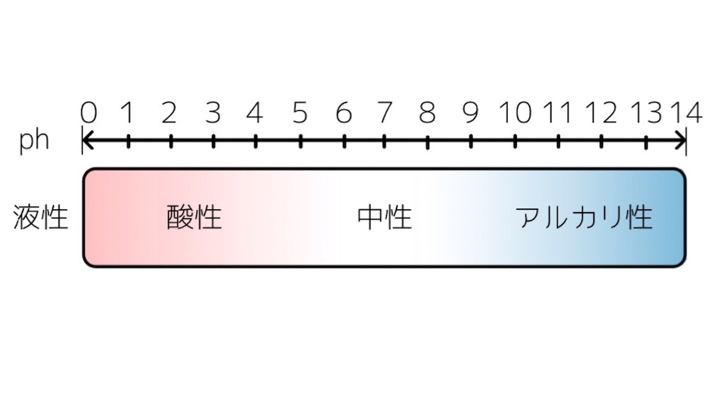 f:id:imomunene08:20210106193353j:image