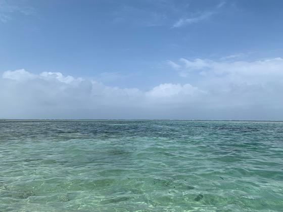 美しい備瀬崎の海