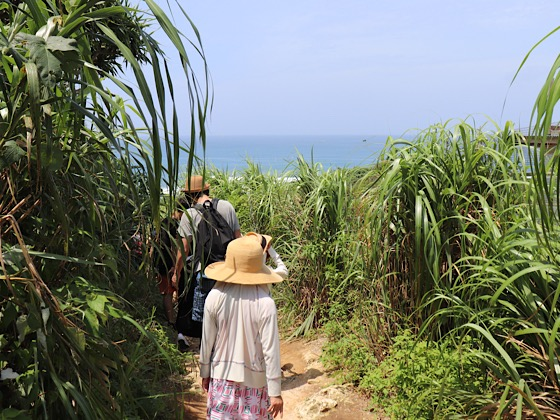 ティーヌ浜へ向かう細道の途中