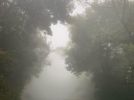 千仏鍾乳洞付近の山道
