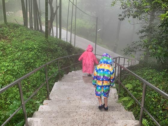 千仏鍾乳洞駐車場から鍾乳洞入口へ向かう急な階段