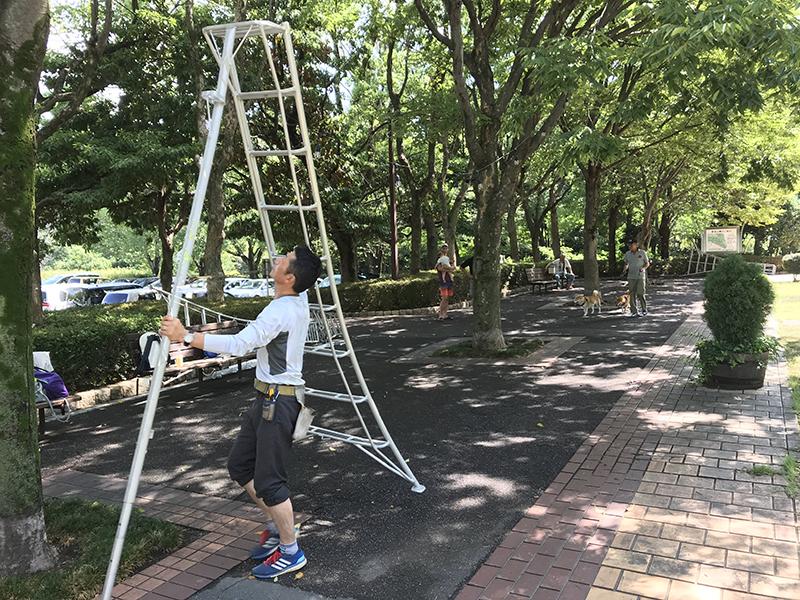 f:id:imuramasakazu:20180901050028j:plain