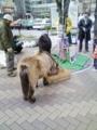 090211赤羽駅前