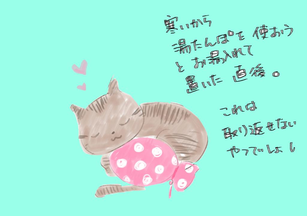 f:id:inakagurashinurse:20171105211818j:plain