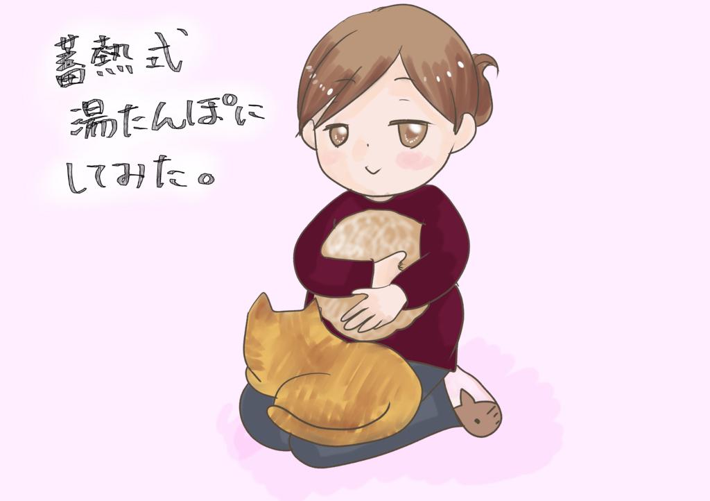 f:id:inakagurashinurse:20171125192423j:plain
