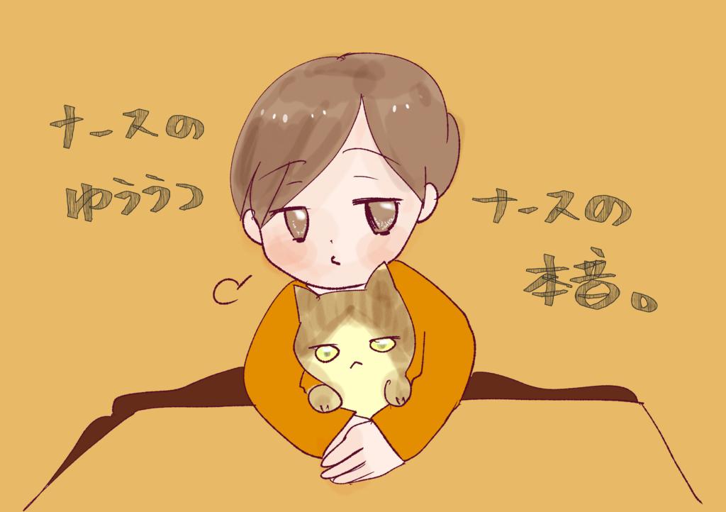f:id:inakagurashinurse:20171220002918j:plain