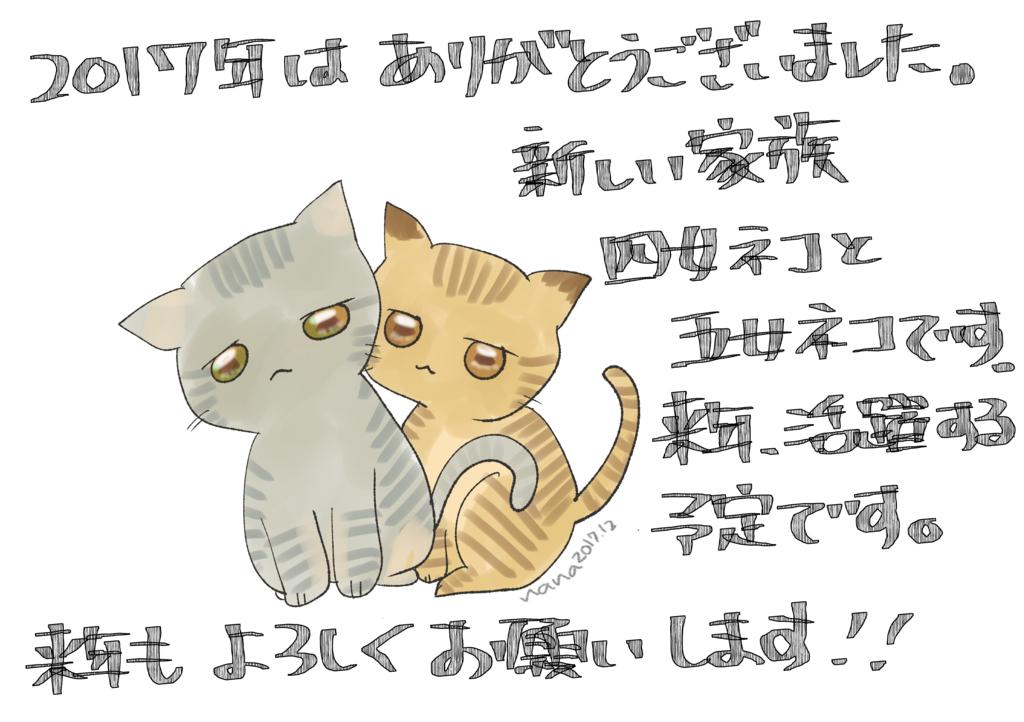 f:id:inakagurashinurse:20171231152156j:plain