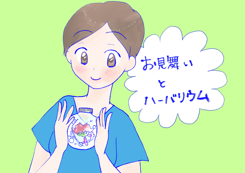f:id:inakagurashinurse:20180613225649j:plain