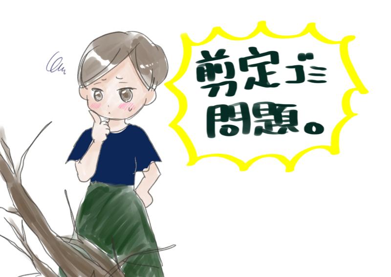 f:id:inakagurashinurse:20180715221623j:image