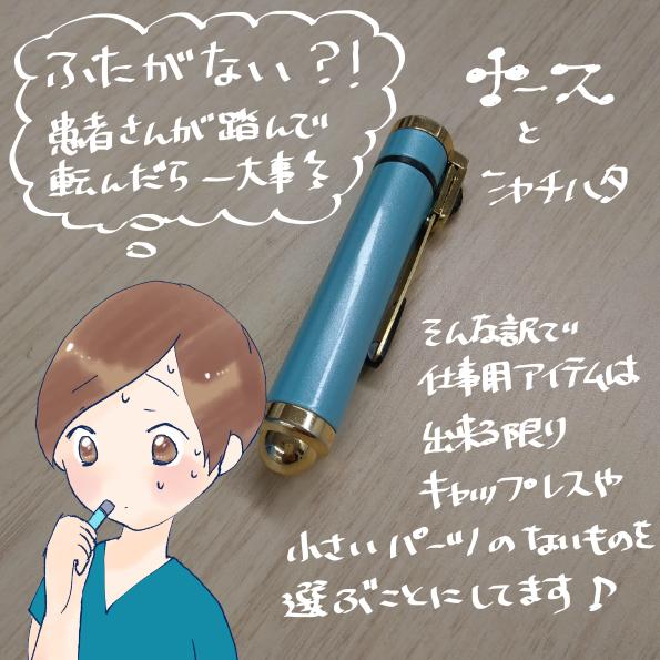 f:id:inakagurashinurse:20190328235204j:plain