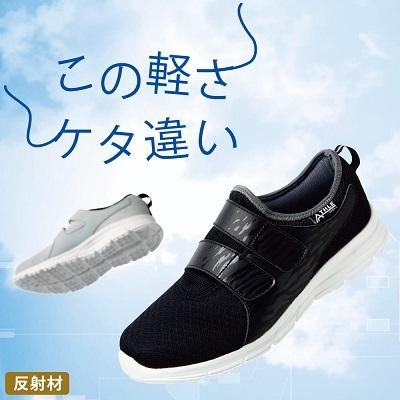 f:id:inakamogura:20210122013356j:plain