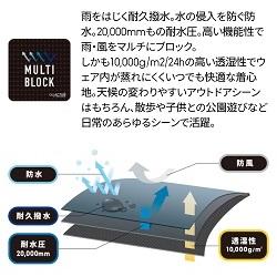 f:id:inakamogura:20210910000638j:plain