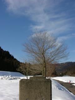 f:id:inakamongakkou:20110305145504j:image
