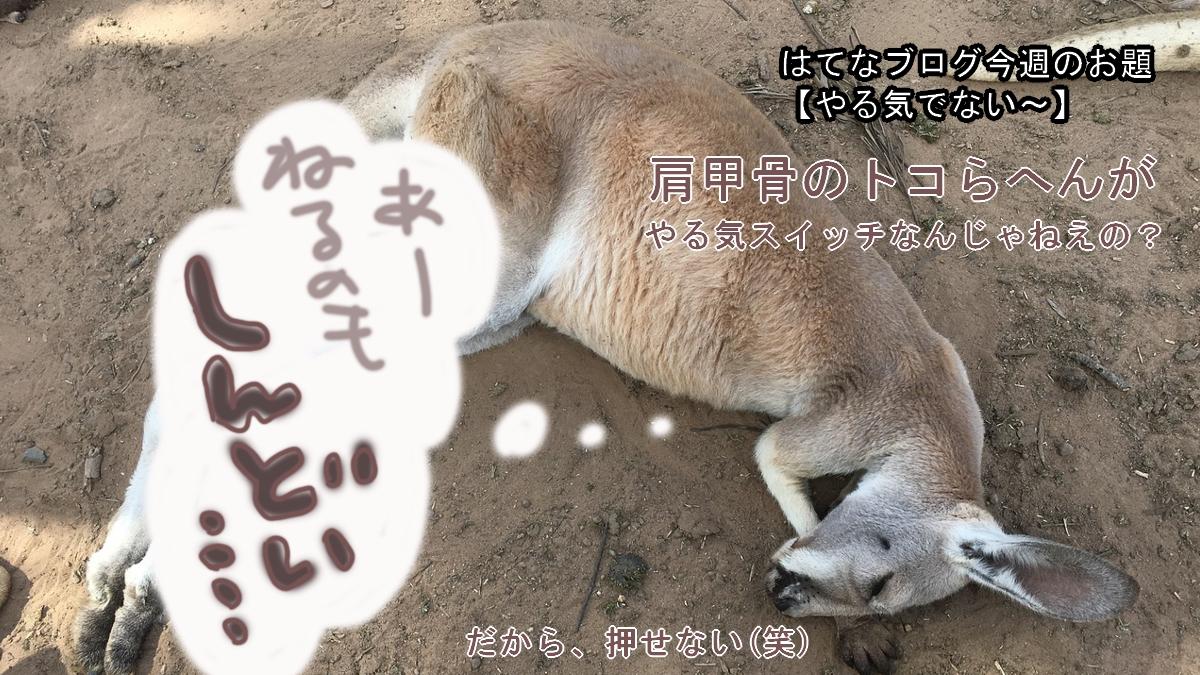 f:id:inakamono88:20210516182502j:plain
