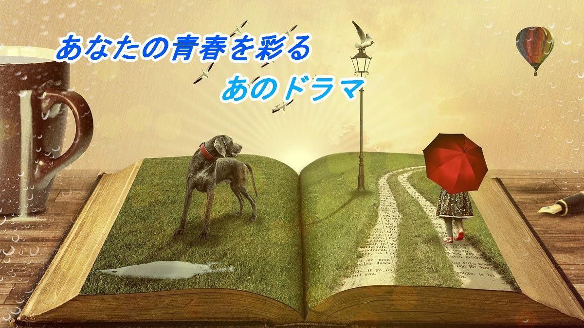 f:id:inakamono88:20210519202606j:plain