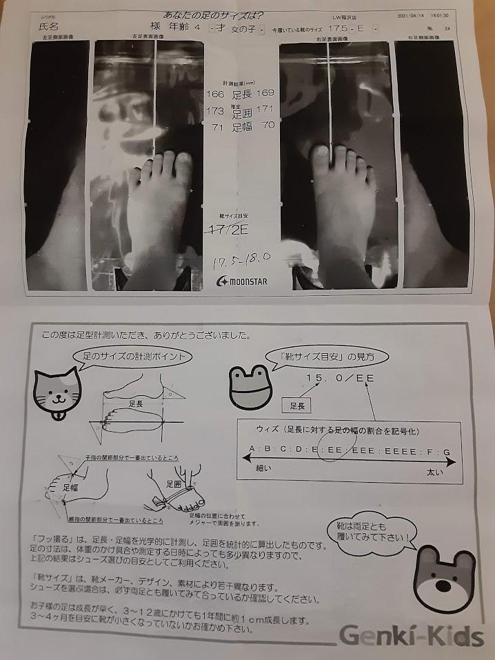 f:id:inakichi-inakichi:20210419230637j:plain