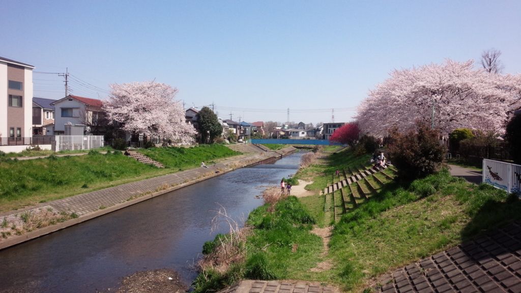 四月は君の嘘聖地 土稜橋からの眺め
