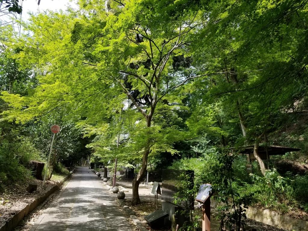 大吉山へ続く道