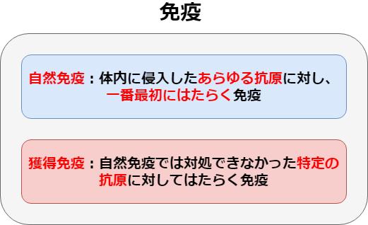 f:id:inarikue:20190501184726p:plain
