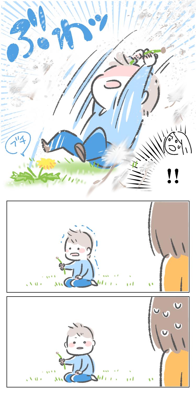 漫画 子育て エッセイ 育児 たんぽぽ タンポポ 綿毛 わたげ 公園 子供 幼児 引っ張る とぶ 飛ぶ ちぎれる 千切れる