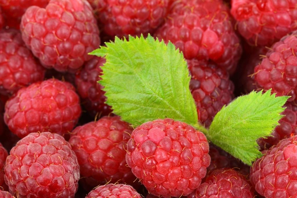 果物は冷凍したほうが栄養価が高くなる