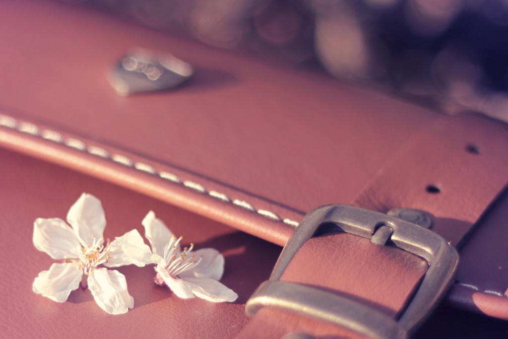 モテる女子はバッグやかばんを大事に使う
