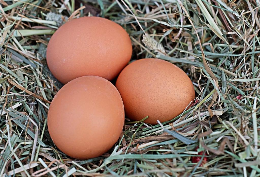 茶色い卵のほうが良いと思い込んでいる理由
