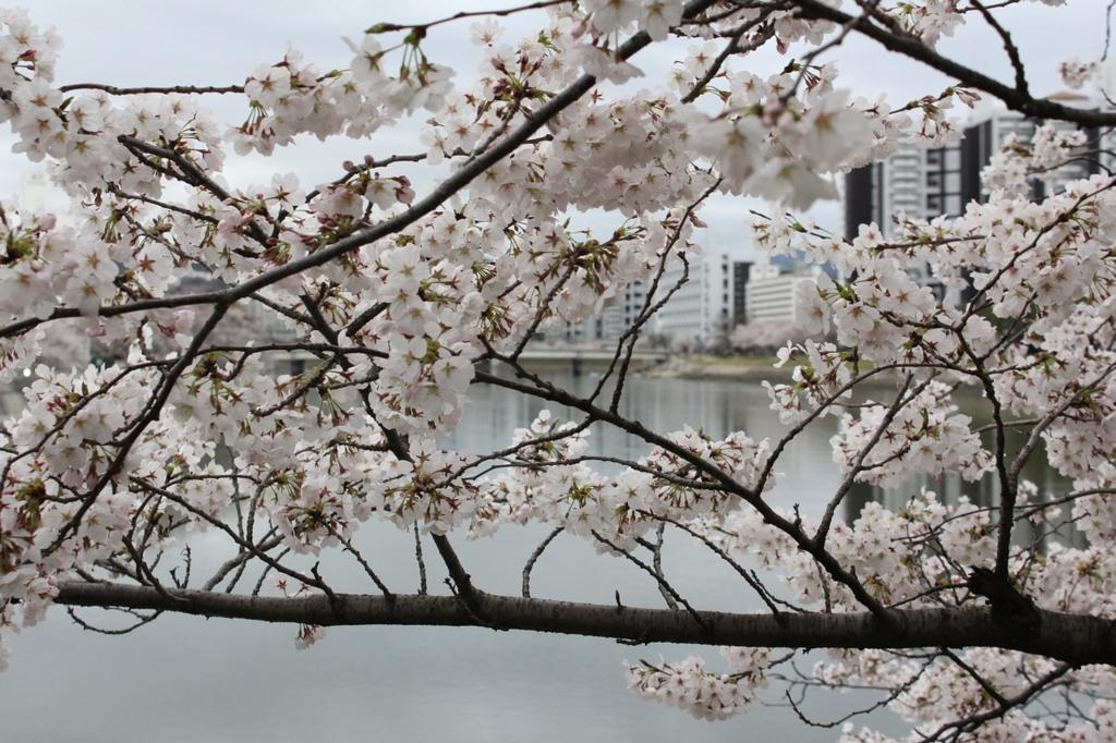 街歩きが楽しい広島