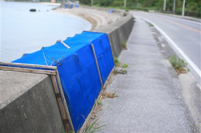 沖縄の道路にはカニが渡るためのネットがある