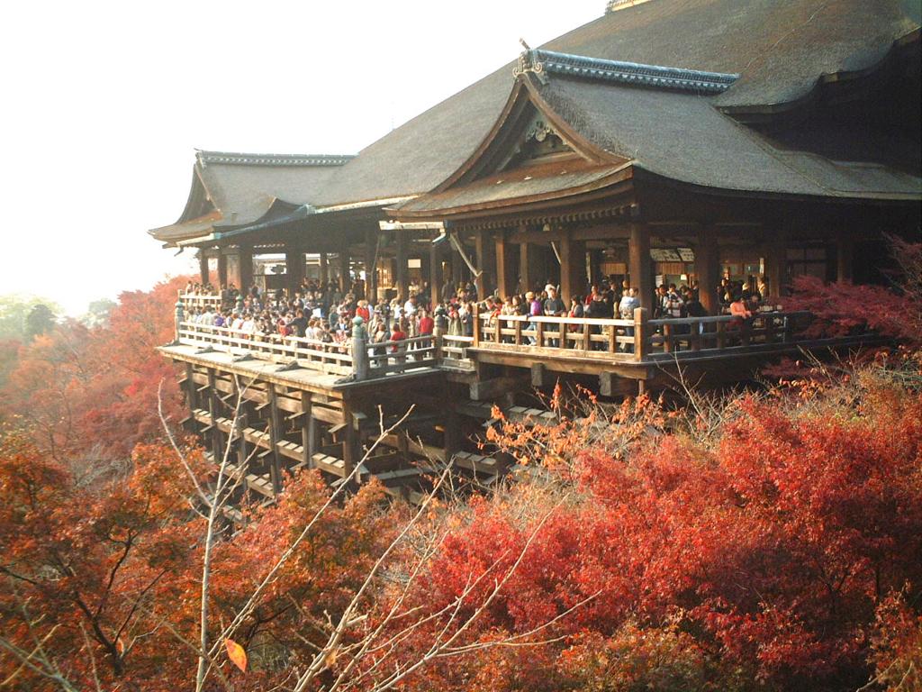 秋の京都を満喫する方法