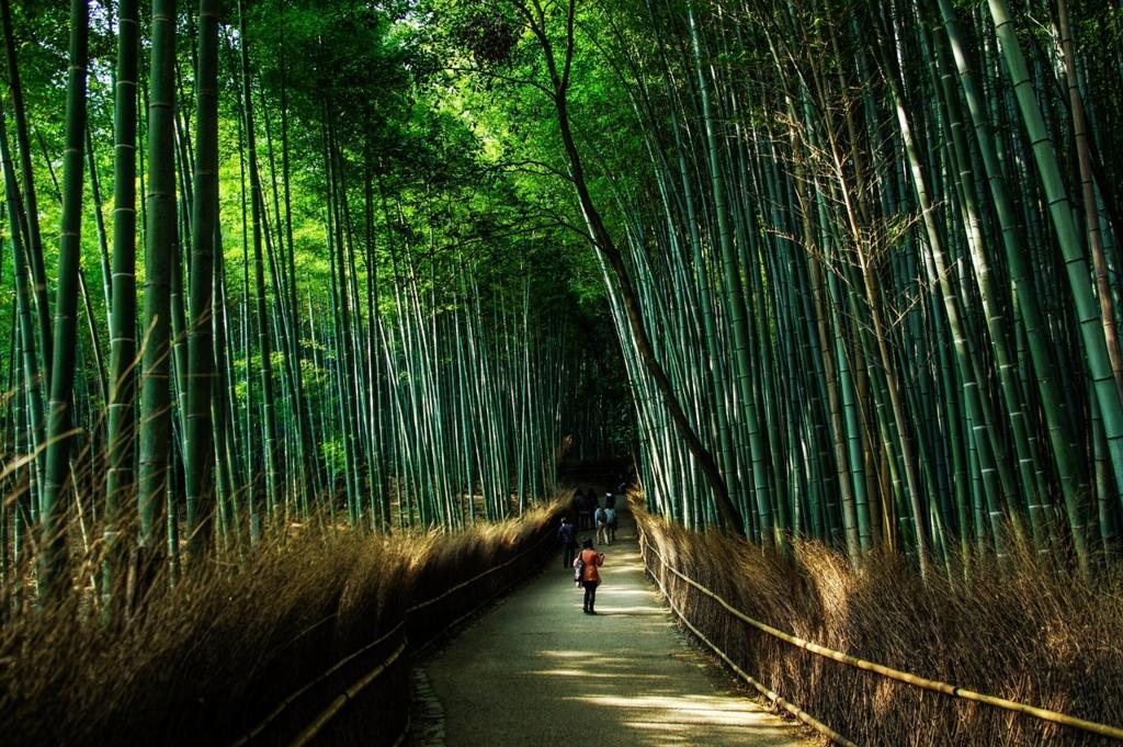 観光シーズンの京都の混雑を避けるにはスポットを巡る順番を決めておく