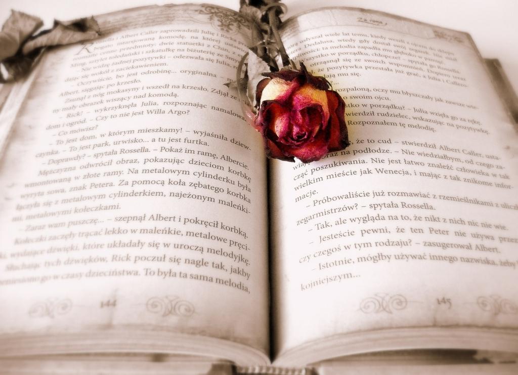 毎日楽しく読書を続ける方法