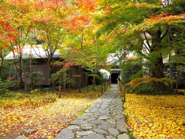 蓮華寺は京都のおすすめ穴場紅葉スポット
