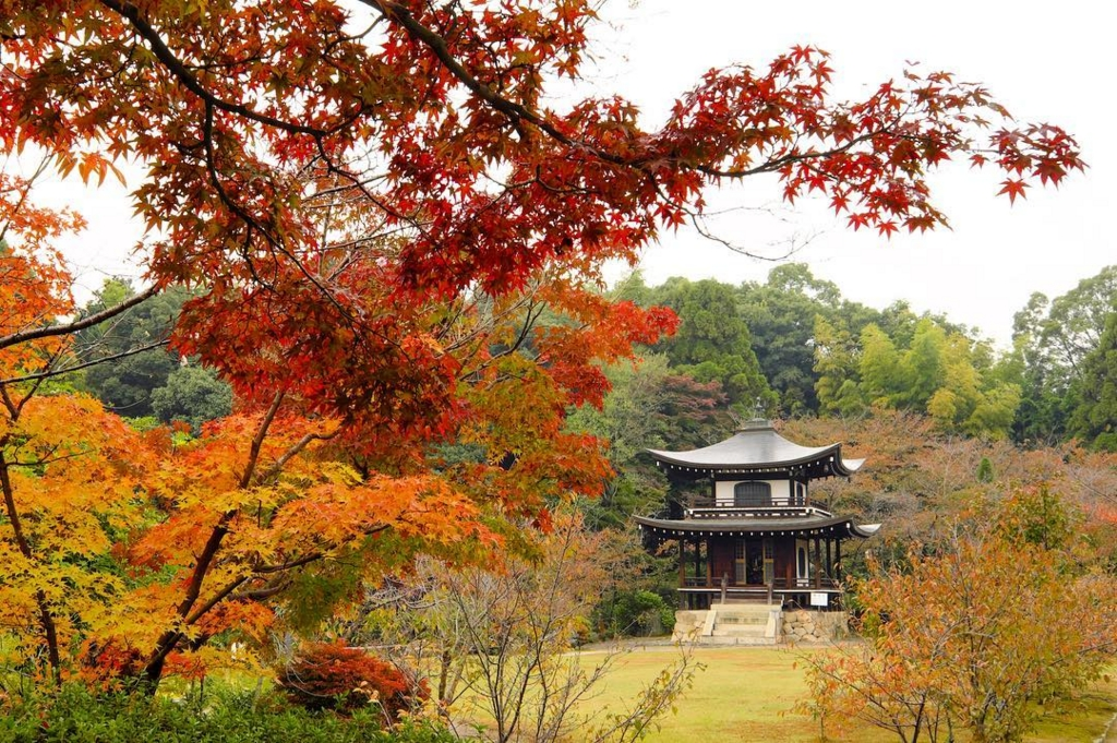 勧修寺は京都のおすすめ穴場紅葉スポット