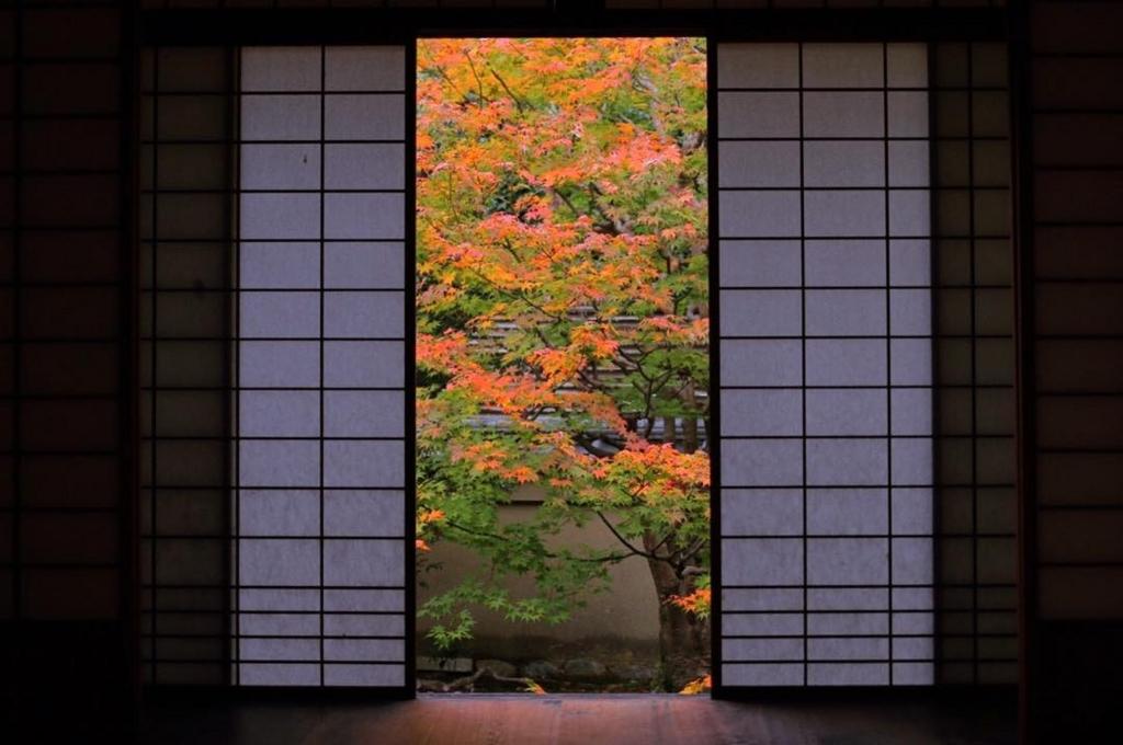 雲龍院は京都のおすすめ穴場紅葉スポット