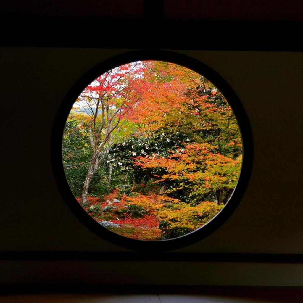源光庵は京都のおすすめ穴場紅葉スポット
