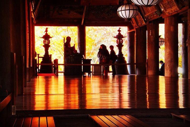 秋の奈良は紅葉の長谷寺がおすすめ