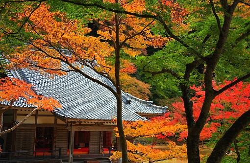 秋の奈良は紅葉の正暦寺がおすすめ