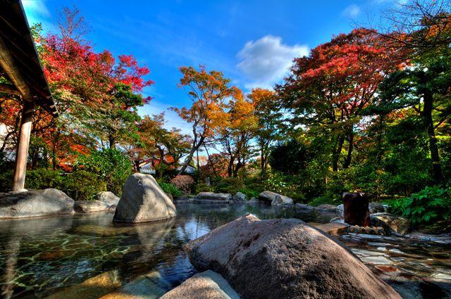 紅葉が美しい神奈川県の「吉池旅館」