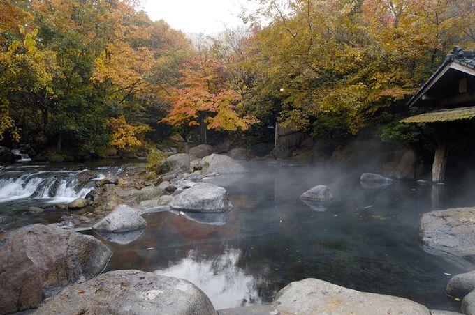 紅葉が美しい熊本県の「山みず木」