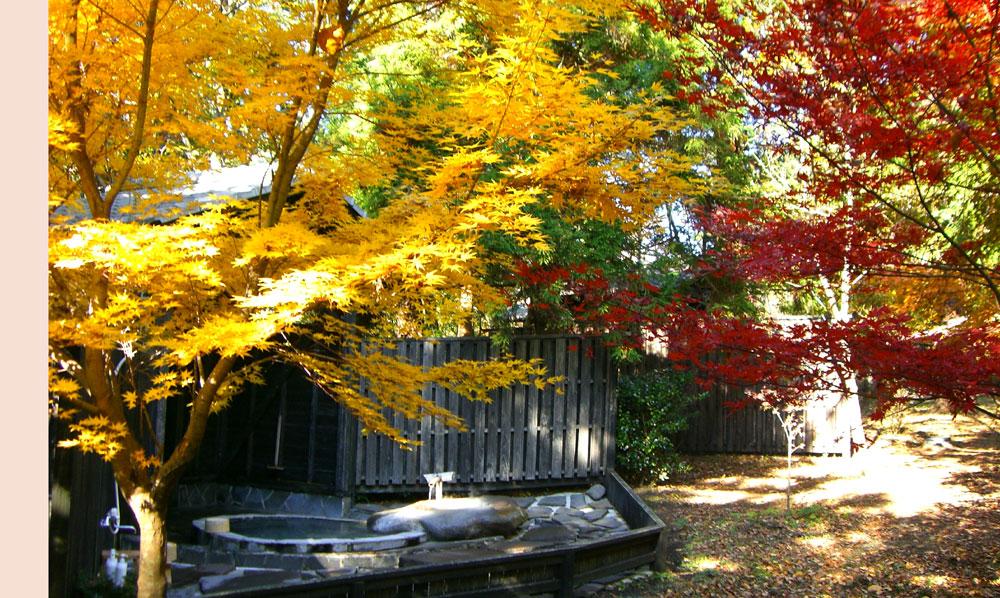 紅葉が美しい鹿児島県の「旅行人山荘」