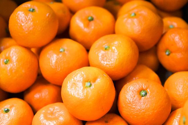 柑橘類は免疫力をアップさせる食品