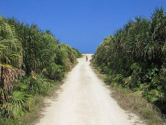 冬の旅行は沖縄のサイクリングがおすすめ