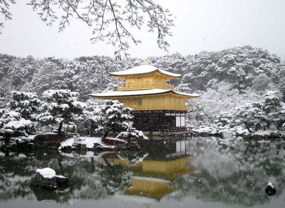 冬の旅行は京都の金閣寺がおすすめ